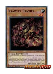 Krawler Ranvier - CIBR-EN020 - Common - 1st Edition