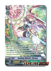 Seeding Maiden, Tierney - G-EB02/S12EN - SP (Special Parallel)