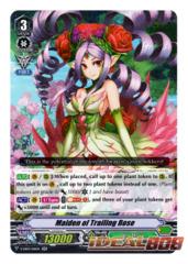 Maiden of Trailing Rose - V-EB03/016EN - RR