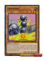 Gokipole - SOFU-EN030 - Rare - 1st Edition