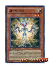 Alien Grey - POTD-EN024 - Common - Unlimited Edition