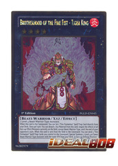 Brotherhood of the Fire Fist - Tiger King - PGLD-EN045 - Gold Rare - Unlimited Edition