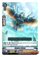 Auspice Falcon - V-TD01/010EN (Regular)