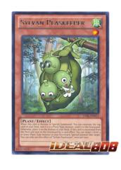 Sylvan Peaskeeper - LVAL-EN015 - Rare - Unlimited