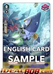 Dolphin Soldier of High Speed Raids - V-TD03/013EN (Regular)