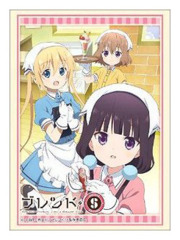 Blend S Character Cast HG Vol.1485 Character Sleeve [#733575]