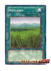 Wetlands - LODT-EN054 - Common - Unlimited Edition