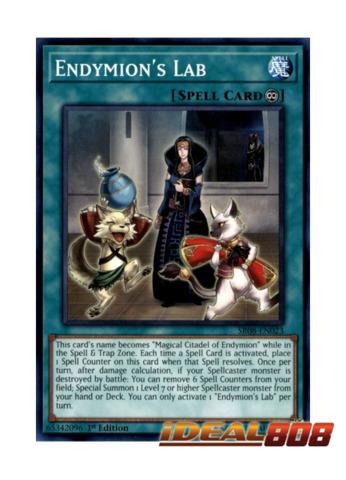 Endymion's Lab - SR08-EN023 - Common - 1st Edition