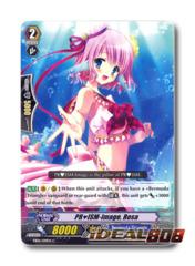 PRISM-Image, Rosa - EB06/019EN - C