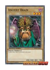 Ancient Brain - SBTK-EN004 - Common - 1st Edition