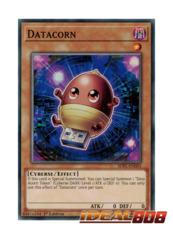 Datacorn - SDPL-EN001 - Common - 1st Edition