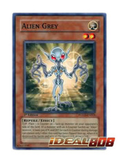 Alien Grey - POTD-EN024 - Common - 1st Edition
