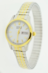Two Tone Stainless Steel Citizen Eco-Drive Watch with Expansion Band