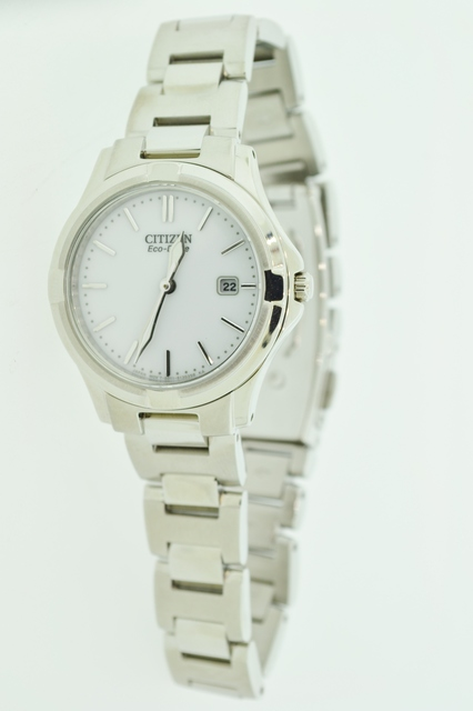 Stainless Steel Citizen Eco-Drive Watch