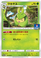 Swadloon - 353/SM-P - Gym Pack