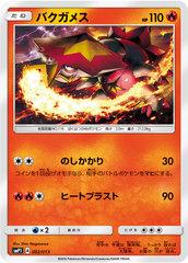 Turtonator - 002/013