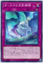 The Weather Auroral Canvas - DBSW-JP041 - Common