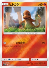 Charmander - 005/024 - Common - Mirror Holo
