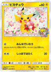 Pikachu - 224/SM-P - Pokemon Center 20th Ann - Holo