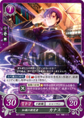 Canas: Researcher of Knowledge B07-035N