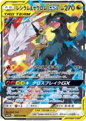 Reshiram & Zekrom-GX - 036/049 - RR - GX Holo