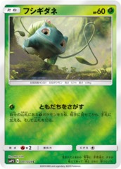 Bulbasaur - 001/024 - Common - Mirror Holo