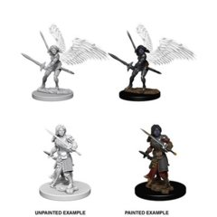 Nolzur's Marvelous Unpainted Miniatures - Aasimar Female Paladin