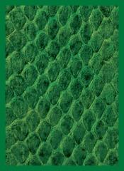 Legion Green Dragonskin Sleeves