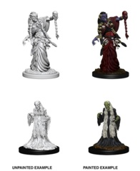 Nolzur's Marvelous Miniatures - Green Hag & Night Hag