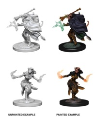 Nolzur's Marvelous Miniatures - Tiefling Female Warlock