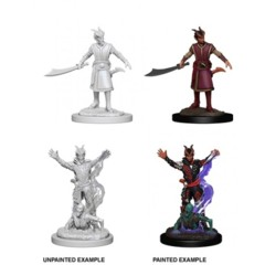 Nolzur's Marvelous Miniatures - Tiefling Male Warlock