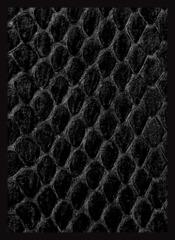 Legion Black Dragonskin Sleeves