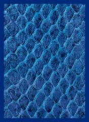 Legion Blue Dragonskin Sleeves