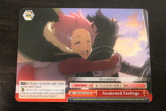 Awakened Feelings - SAO/S47-121 PR