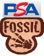 Fossilpsa