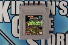 Teenage Mutant Niinja Turtles: Fall of the Footclan