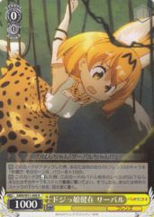 KMN/W51-008R - Serval, Ditzy Girl Lives