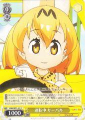 KMN/W51-021C - Serval, Driving