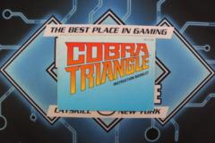 Cobra Triangle Manual