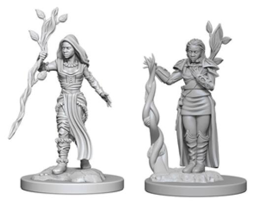 D&D Nolzurs Marvelous Miniatures - W2 Human Female Druid