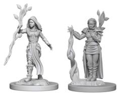 D&D Nolzur's Marvelous Miniatures - W2 Human Female Druid