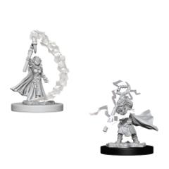 Pathfinder Deep Cuts Gnome Female Sorcerer