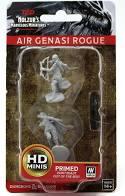 Air Genasi Rogue