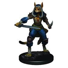 Icons of the Realms Tabaxi Rogue