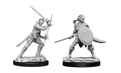 Deep Cuts Unpainted Miniatures - Female Elf Fighter