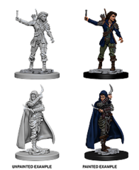 Pathfinder: Deep Cuts Unpainted Miniatures - Human Female Rogue