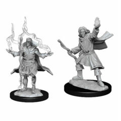 Male Elf Sorcerer (W14)