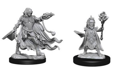 Deep Cuts Unpainted Miniatures - Male Human Wizard