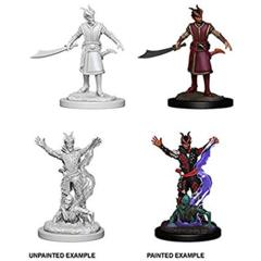 Nolzur's Marvelous Miniatures Male Tiefling Warlock