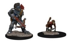 Wardlings- Boy Rogue & Monkey